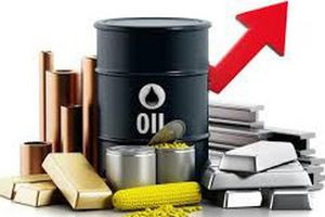 Thị trường hàng hóa 13/01 - 17/01: Cà phê Arabica lập đáy mới trong 13 năm, cao su chạm ngưỡng cao nhất trong tháng qua