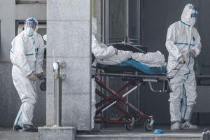Chuyên gia HK: Virus lạ lan tới 20 thành phố lớn của Trung Quốc