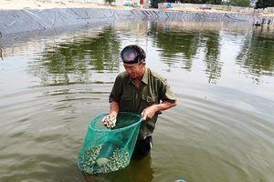 Phát triển thủy sản trên vùng cát