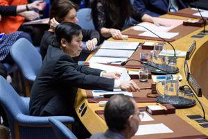Việt Nam chủ trì phiên họp HĐBA về tình hình Trung Đông
