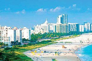 Chống xói mòn ở vùng biển Miami