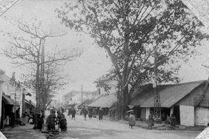 Loạt ảnh cực quý chưa một lần tiết lộ về Hà Nội năm 1905