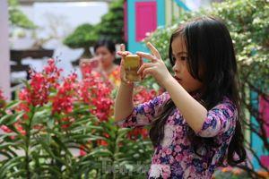 Dân Sài Gòn kéo nhau vào hội hoa xuân chụp hình 'tự sướng' ngày cận tết