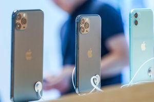 iPhone 11, iPhone 11 Pro và 11 Pro Max chiếm 69% lượng iPhone bán ra trong Q4/2019