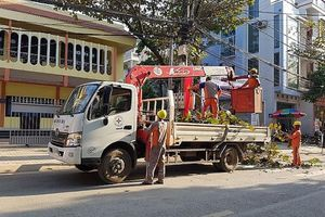 Ngành điện Sơn La sẵn sàng phục vụ Tết Canh Tý 2020