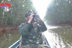 Tết của người lính giữ rừng