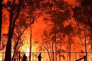 Australia đối mặt với nguy cơ hỏa hoạn trở lại