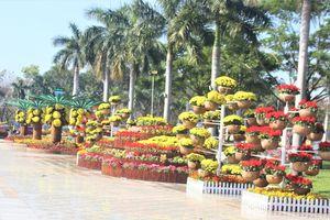 Quảng Nam: Quảng trường 24-3 rực rỡ trước Tết Canh Tý 2020