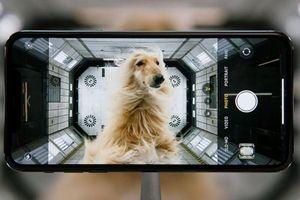 'Mổ xẻ' 3 smartphone chụp ảnh đẹp nhất hiện nay