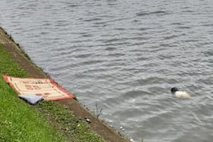 Phát hiện thi thể người đàn ông nổi trên hồ sáng 30 Tết