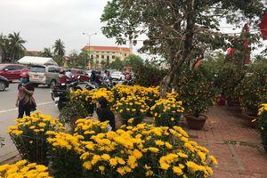Quảng Bình: Nhộn nhịp người bán kẻ mua chợ hoa chiều 30 Tết