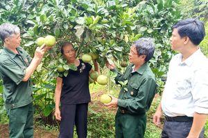 Những công dân gương mẫu ở Sơn Hà