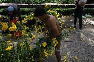 Tiểu thương đập hoa: Khi giá sập sàn khách vẫn kỳ kèo