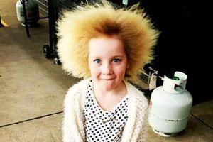 'Công chúa tóc xù' ở Australia