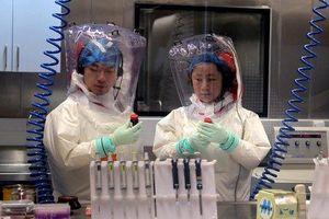 Phòng thí nghiệm Vũ Hán bị nghi ngờ khiến virus corona thoát ra ngoài