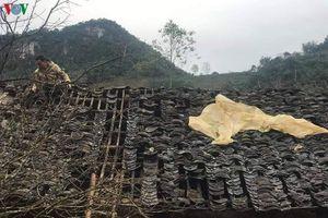 Mưa đá gây thiệt hại nghiêm trọng tại nhiều tỉnh, thành miền Bắc
