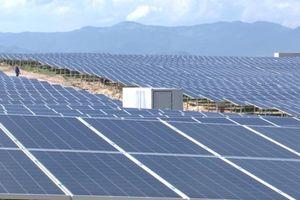 Tây Ninh sắp có nhà máy điện mặt trời công suất 50 MW