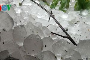 Mưa đá và dông lốc gây thiệt hại hơn 12.000 ngôi nhà
