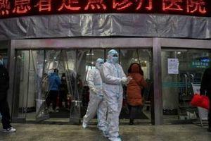 81 người chết do virus corona, nhiều doanh nghiệp Trung Quốc tê liệt