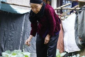 Tết đầu tiên của cụ bà 85 tuổi sau khi viết đơn xin được ra khỏi hộ nghèo