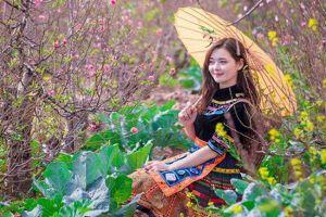 Thời tết 28/1: Bắc Bộ đến Thanh Hóa, trời rét đậm