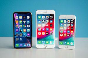iOS 14 hỗ trợ tất cả các thiết bị hiện đang chạy iOS 13