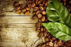 Giá cà phê hôm nay 30/1: Thị trường ổn định vào Tết Nguyên đán
