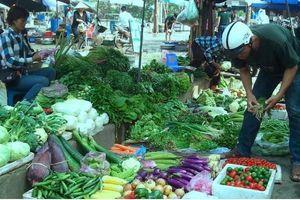 Người tiêu dùng phải mua rau xanh đắt ngang thịt sau Tết Nguyên đán