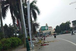 Xác minh người đập phá các chậu hoa cảnh ở Thành phố Vinh