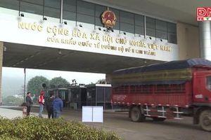 Dịch nCoV: Nỗ lực tìm giải pháp cho nông sản xuất khẩu