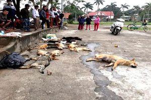 Nghệ An: Hai anh em rải bả độc để trộm chó, mèo bị người dân truy bắt