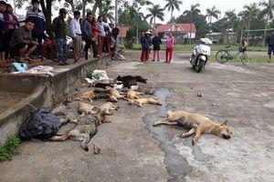 Người dân vây bắt anh em ruột trộm hơn 20 con chó, mèo