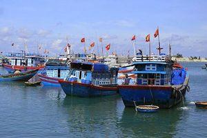 Quảng Ngãi phải quyết liệt hơn với chống đánh bắt hải sản bất hợp pháp