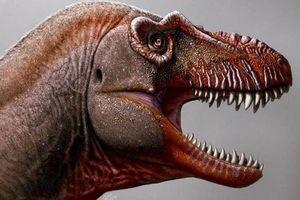 Phát hiện hóa thạch 'Lưỡi hái tử thần', họ hàng của bạo chúa T.rex