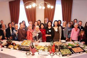 Năm Chủ tịch ASEAN 2020: ASEAN quảng bá văn hóa tại Ukraine