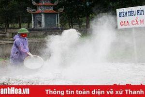 Quyết liệt thực hiện các biện pháp ngăn chặn, đẩy lùi dịch cúm gia cầm H5N6