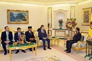Việt Nam-Brunei tăng hợp tác trong lĩnh vực hai bên có thế mạnh