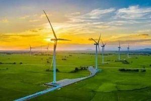 Thêm hai dự án điện gió tại Quảng Trị về tay Xây lắp điện 1