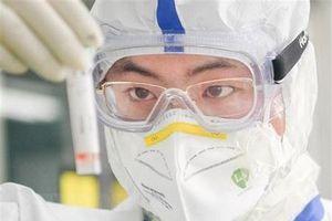 Nhiều nỗ lực tìm kiếm thuốc điều trị COVID-19