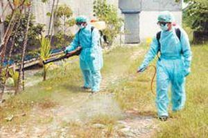 Việt Nam đang có 16 ổ dịch cúm H5N6 và H5N1