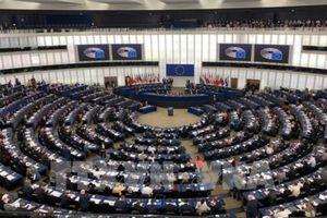 EVFTA, khởi đầu kỷ nguyên mới trong quan hệ thương mại Việt Nam - EU