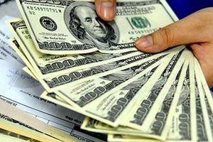 USD tiếp tục tăng giá, chưa lo lắng về VND
