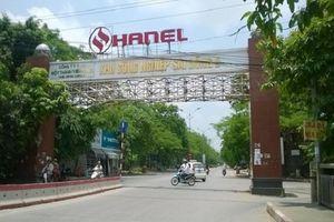 Hanel bị phạt 300 triệu đồng vì vi phạm chứng khoán