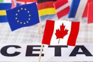 FTA giữa EU và Canada vượt qua rào cản tại Hạ viện Hà Lan