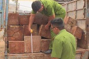 Gia Lai: Khởi tố đối tượng vận chuyển gỗ lậu, đánh trọng thương 2 cán bộ kiểm lâm
