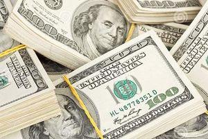 Giá trao đổi USD đi ngang, các ngoại tệ mạnh đồng loạt tăng giá