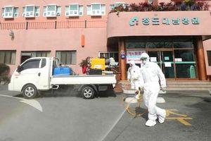 Dịch Covid-19: 2 đường dây nóng hỗ trợ công dân Việt Nam tại Hàn Quốc