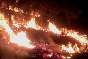 Lâm Đồng: Cháy lớn trên núi Đại Bình