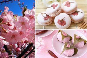 Top 9 món ăn 'độc lạ' từ hoa anh đào chỉ có tại Nhật Bản