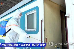 Triều Tiên cách ly 380 người nước ngoài 30 ngày, theo dõi 3.000 người gần TQ